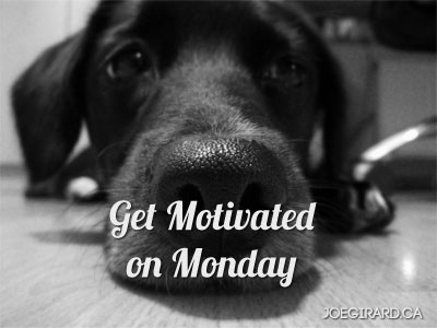 motivated on monday, sad dog face, Joe Girard, Success Tips