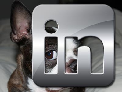 Custom LinkedIn URL, Dog
