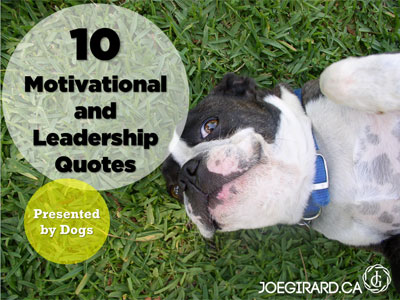 leadership, success, quotes, motivational, joe girard, dogs, cute pictures